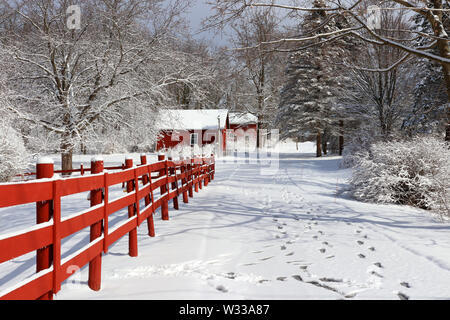 Rural landscape with red barns, wooden red fence and trees covered by fresh snow in sunlight. Scenic winter view at Wisconsin, Midwest USA, Madison ar - Stock Photo