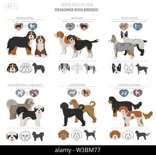 Designer dogs, crossbreed, hybrid mix pooches collection isolated on white. Flat style clipart set. Vector illustration - Stock Photo