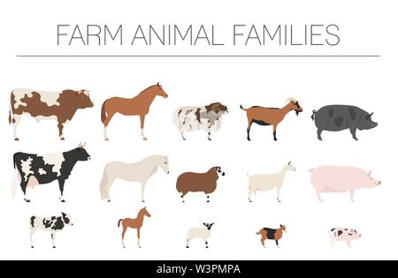 Farm animall family collection. Cattle, sheep, pig, horse, goat icon set. Flat design. Vector illustration - Stock Photo
