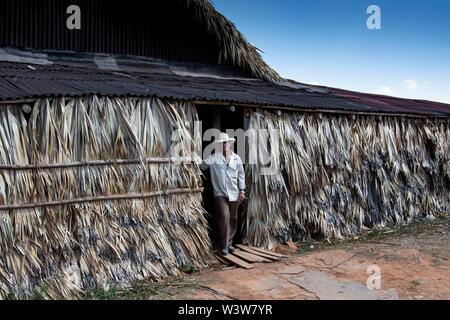 PINAR DEL RIO: FARMER ON TOBACCO FARM IN THE VINALES VALLEY - Stock Photo