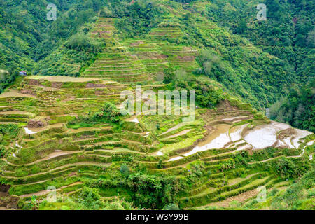 Banaue rice terraces in early spring, Mountain Province, Cordillera Administrative Region, Philippines - Stock Photo