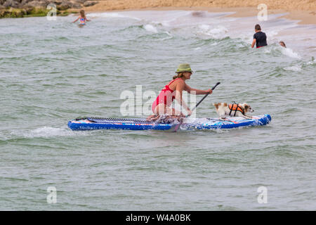 Branksome Dene Chine, Poole, Dorset, UK. 21st July 2019. After the success of last years UKs first Dog Surfing Championships, organised by Shaka Surf, at Branksome Dene Chine beach, the event is held for the second year with even more dogs taking part and surfing and paddleboarding on their boards. Crowds turn out to watch the fun on a breezy day making conditions more challenging. Tilly, the Jack Russell, dog surfing with owner - Tilly on surfboard paddleboard.Credit: Carolyn Jenkins/Alamy Live News - Stock Photo