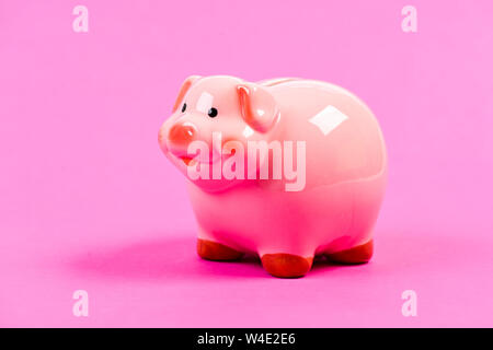 Loan. financial problem. money saving. income management. planning budget. piggy bank on pink background. loan concept. need a loan. Economics and finance. Credit loan debt. On the way to success. - Stock Photo