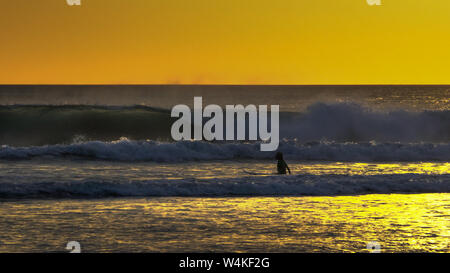 sunset shot of a young surfer wading out to go surfing kuta, bali - Stock Photo