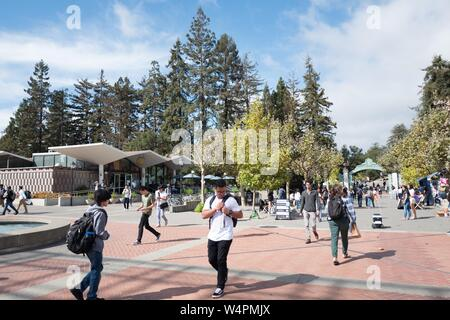 Large crowds of students walk through the campus of UC Berkeley in downtown Berkeley, California on Sather Road, with a Kiwi autonomous food delivery robot visible at right navigating among pedestrians, October 9, 2018. () - Stock Photo