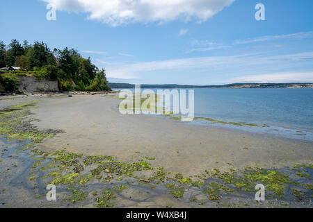 View of the shoreline near the Coupeville Wharf on Whidbey Island in Washington State at low tide - Stock Photo