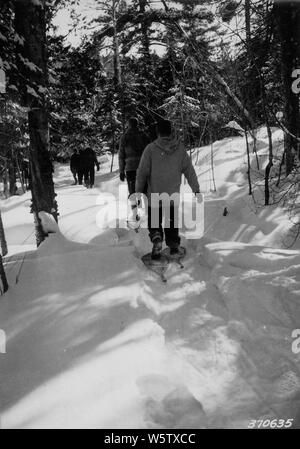 Photograph of One of the Portage Trails; Scope and content:  Original caption: On a return trip a well beaten trail makes the trip much easier. This view was taken on one of the portage trails. - Stock Photo