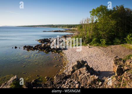 Rocky beach at Sandkaas on north east coast looking to Tejn, Allinge, Bornholm Island, Baltic sea, Denmark, Europe - Stock Photo