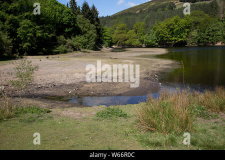 Low water level in Ladybower Reservoir, the largest (holding 6300 million gallons) of three water storage reservoirs in the Derwent Valley, Peak Distr - Stock Photo