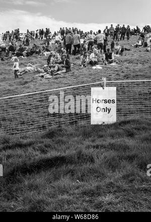 horses only sign at the four burrow hunt point to point horse race 2019 - Stock Photo