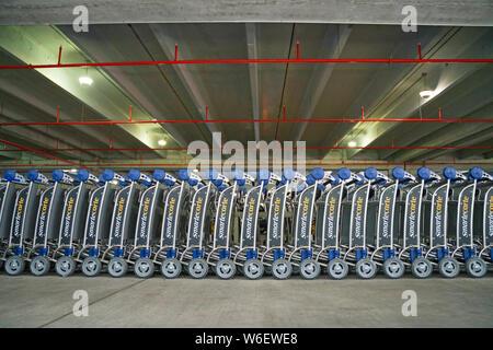 Airport Trolleys Miami Airport - Stock Photo