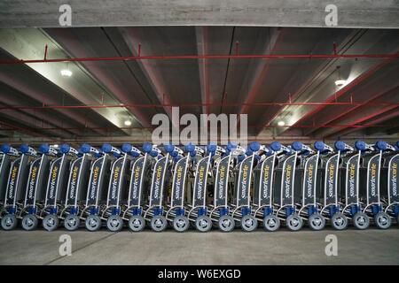 Luggage Trolleys Miami Airport - Stock Photo