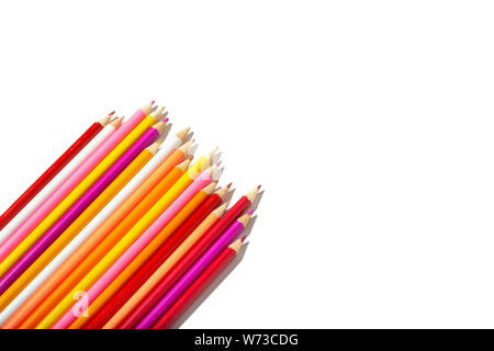 Multicolored pencils isolated on white background. Copy space for text. Back to school concept - Stock Photo