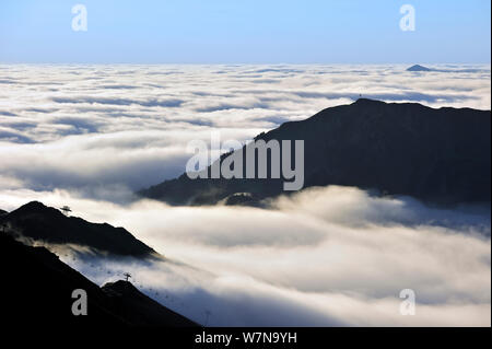 View over silhouetted chairlifts and mountains covered in mist at sunrise seen from the Col du Tourmalet, Pyrenees, France, June 2012 - Stock Photo