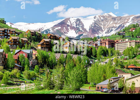 Mount Crested Butte, USA - June 21, 2019: Colorado houses on hill in summer with green trees and snow mountain view - Stock Photo