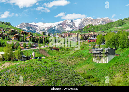 Mount Crested Butte, USA - June 20, 2019: Village in summer with colorful grass and wooden lodging houses on hills with green trees - Stock Photo