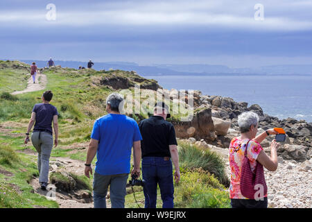 Tourists walking along coastal path at Fermanville in summer, Cap Lévi / Levi Cape, Manche, Cotentin, Normandy, France - Stock Photo