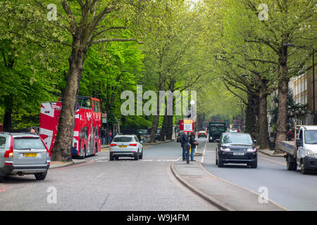 Cars on Tree lined Holland Park Avenue, The Royal Borough of Kensington and Chelsea, London, UK - Stock Photo
