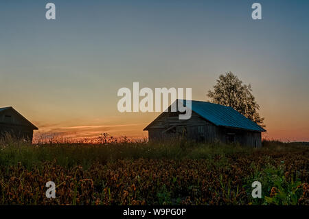 Old barn houses by a potato field on a late summer evening at the rural Finland. The sunset is coloring the night sky beautifully. - Stock Photo