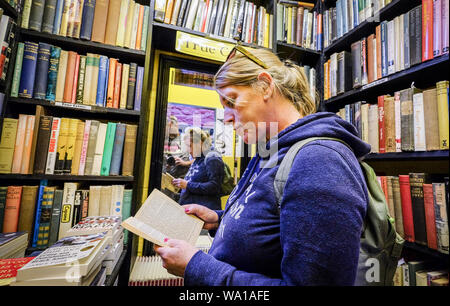 A woman reading a book in a book shop at Hay-on-wye in Wales - Stock Photo