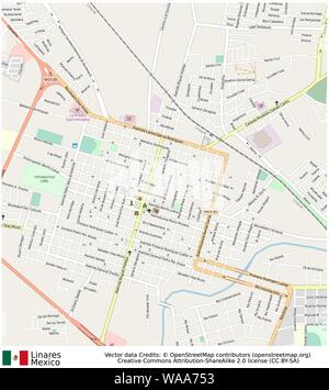 Linares,mexico,north america - Stock Photo
