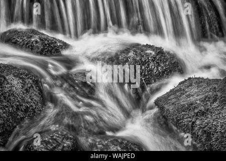 USA, California, Yosemite, Fern Spring - Stock Photo