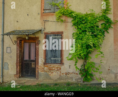Lisle-sur-Tarn, Midi Pyrenees, France - July 14, 2017: Rustic house with vines next to the entrance - Stock Photo