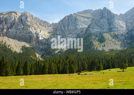 View of Canal de Cristall ravine in Sierra del Cadí mountain range from Prat de Cadí pastures (Alt Urgell, Lleida, Pre-Pyrenees, Cataluña, Spain) - Stock Photo
