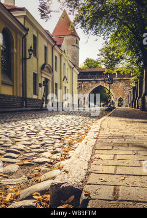 Tallinn, Estonia. Aug 13, 2019: Beautiful street view of Tallinn's medieval castle tower in the old town - Stock Photo