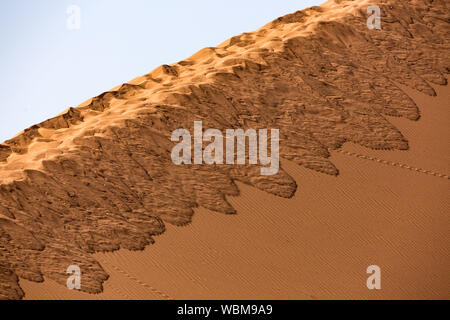 Track to the summit of Dune 45, Namib desert, Namibia - Stock Photo