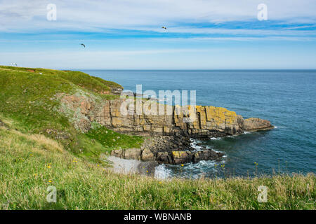 Remote beach and cliff along the Coastal Path Collision to Cruden Bay in Scotland. Sunny day in August in Scotland. - Stock Photo