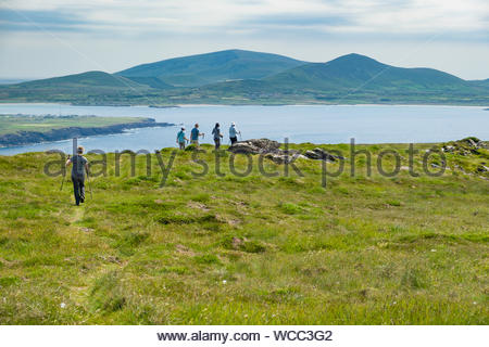 Group of people hiking on Ballydavid Head with Mount Eagle in the distance, Curragraigue, Boherboy, County Kerry, Munster, Ireland - Stock Photo