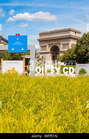 France, Paris, the entirely pedestrian avenue Foch, BiodiversiTerre project, a 10,000 m² plant artwork by artist Gad Weil from 3rd to 5th of June 2017 - Stock Photo