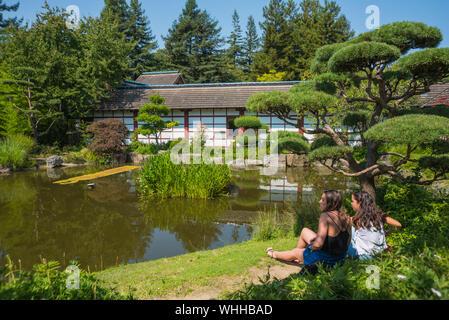 Japanischer Garten auf der Isle de Versailles in Nantes, Nantes, Isle de Versailles, Jardin Japonais - Nantes, Versailles Island, Japanese Garden - Stock Photo