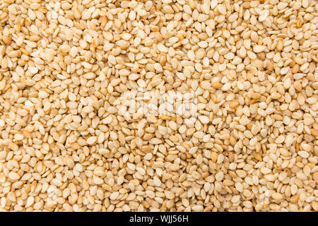 Sesamum indicum is scientific name of Sesame. Also known as Gergelim (portuguese) and Sesamo (spanish). Closeup of grains, background use. - Stock Photo