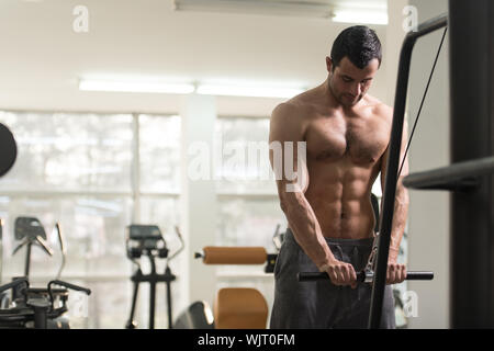 Young Hairy Muscular Fitness Bodybuilder Doing Heavy Weight Exercise For Triceps On Machine In The Gym - Stock Photo