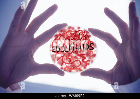 Scientists hands holding petri dish of germs low angle view - Stock Photo