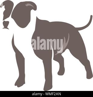 Vector image of an dog pitbull terrier on white background - Stock Photo