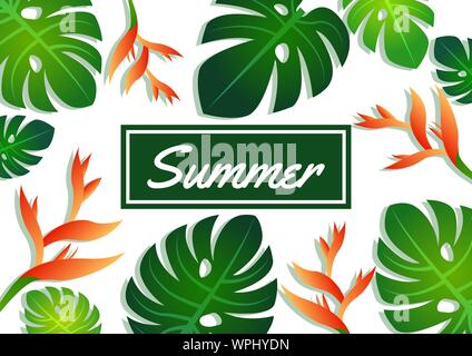 Summer sale offer pattern banner philodendron leaves, craw crab flower and label,modern and fashionable design,vector illustration - Stock Photo