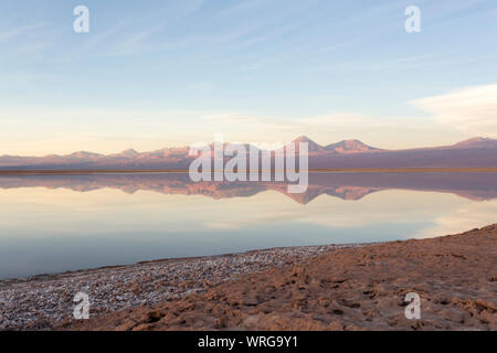 Reflection at sunset in laguna Chaxa, Chile - Stock Photo