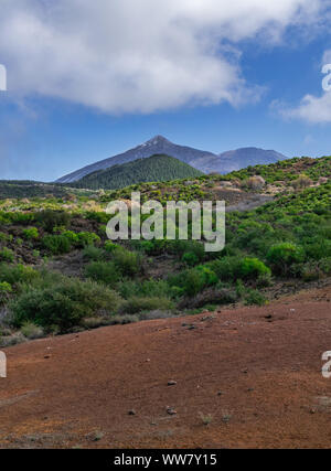 Santiago del Teide volcanic landscape, with Teide volcano background, with blue sky and clouds, Tenerife, Canary islands, Spain - Stock Photo