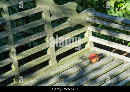 Apple on a bench - Stock Photo