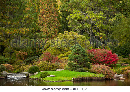 Asticou Azalea Garden, public, Northeast Harbor, Maine, USA - Stock Photo