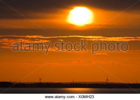 coastline at the Little Belt at sunset with silhouettes of wind wheels, Denmark, Kleiner Belt - Stock Photo