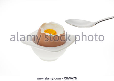 egg .... - Stock Photo