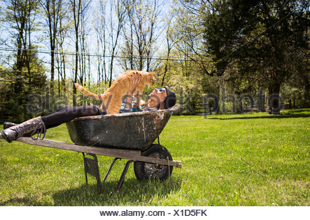 Woman in wheelbarrow holding ginger cat - Stock Photo