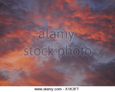 Dramatic purple sky and red gray cloudy at sunset - Stock Photo