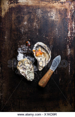 Oyster and oyster knife on dark metal background with ice and spicy sauce - Stock Photo