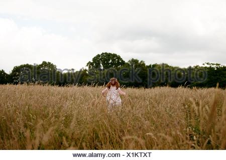 A little girl walking in a field, rear view - Stock Photo