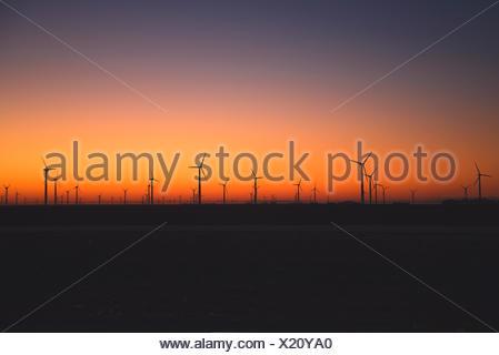 Wind turbines in a row at sunset, Sierra Blanca, Texas, America, USA - Stock Photo